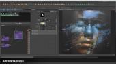 Autodesk - Arnold